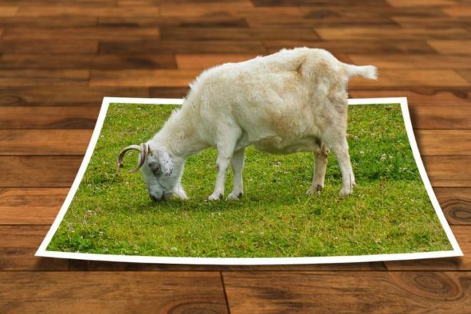 Bildbearbeitung 660x440 - Werbeagenturen - die Aufgabenfelder werden komplexer