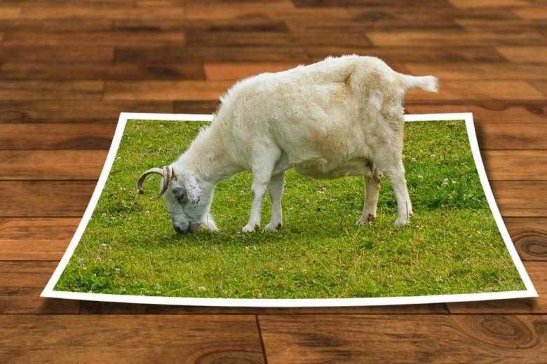 Photo of Werbeagenturen – die Aufgabenfelder werden komplexer